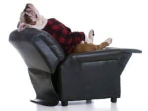 Furniture Upholstery Repair Pensacola Florida Best