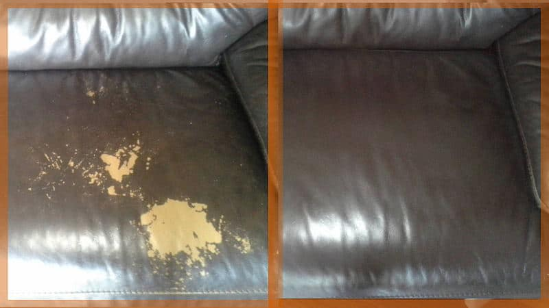 Leather Chemical Burns Repaired